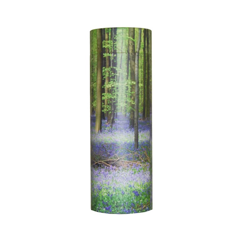 Scatter Tube Bluebell Wood.