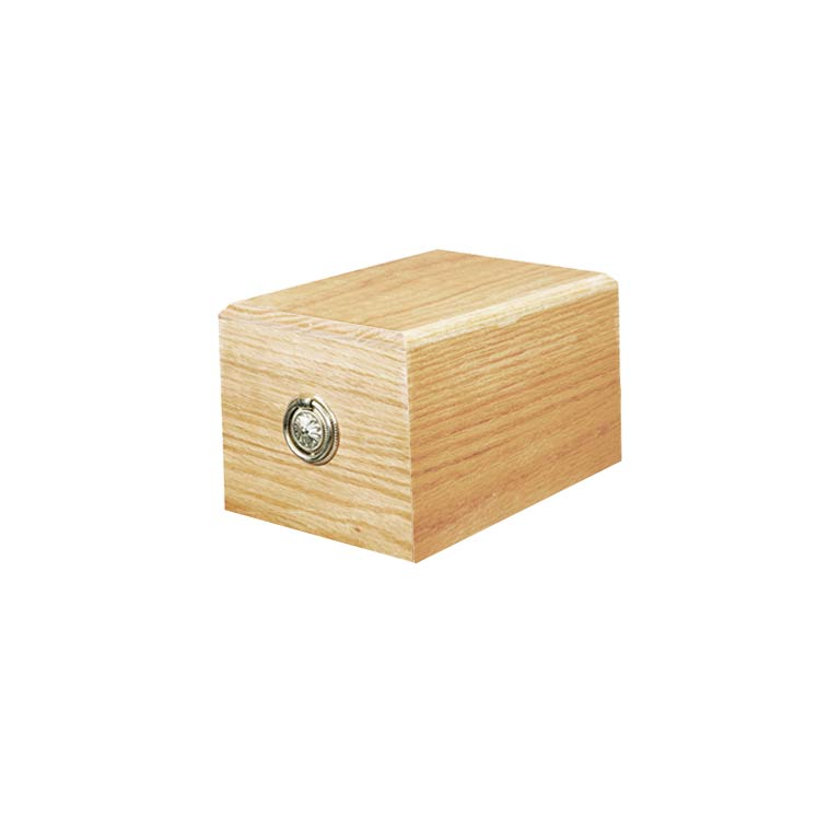 Valut Box Casket.